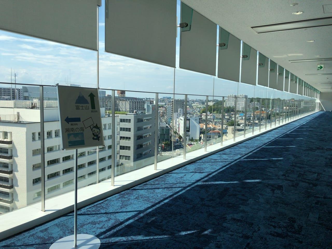 藤沢市役所の展望デッキ9階